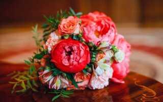 2020 рік для весілля: сприятливі дні, прикмети