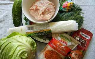 Шаурма з куркою і корейською морквою. Рецепт як приготувати смачну шаверму в домашніх умовах