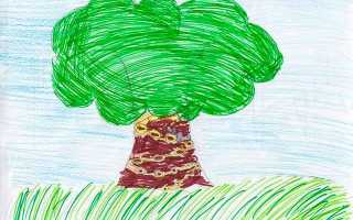 У лукомор'я дуб зелений — малюнки дітей і художників