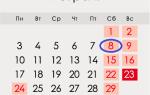 День науки в Росії в 2020 році: якого числа, дата