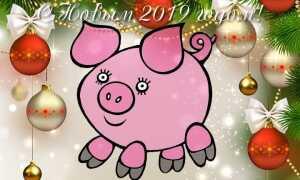 Новорічні картинки з символом 2019 року Свинею | на новий рік