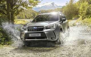 Новий Subaru Forester 2019 модельного року   фото, ціна
