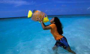 Новий 2020 рік на Мальдівах | ціна, відпочинок, де зазначити
