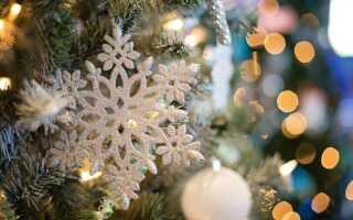 Новорічні ялинки в 2018-2019 році | Новий рік, в Санкт-Петербурзі, в Москві