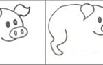 Як намалювати свиню на Новий 2019 год | малюємо жовту свинку