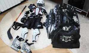 Що подарувати хокеїстові? Ідеї подарунків любителю хокею на свята (день народження, Новий рік, 23 лютого)