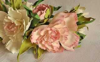 Квіти з фоамірана. Як зробити квіти з фоамірана + схеми, шаблони