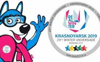 Символ Універсіади 2019 Красноярську | логотип, емблема Спартакіади
