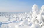 Новий 2019 рік у Карелії | ціна, відпочинок, де зазначити