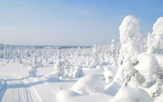 Новий 2019 рік у Карелії   ціна, відпочинок, де зазначити